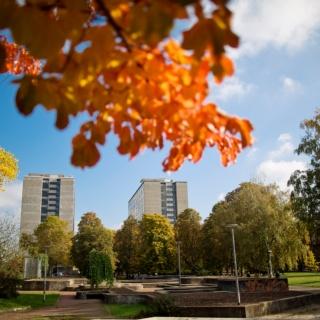 Ein Symbolbild: Campus Stadtmitte